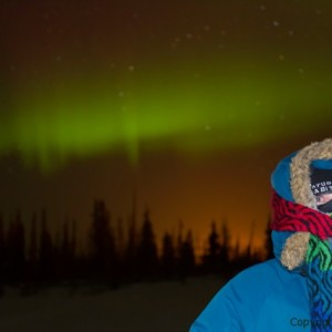 northern lights photo tour, aurora borealis image