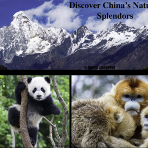 webinar on china nature travel